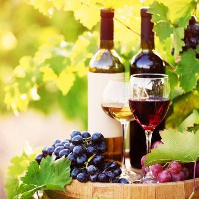 e-Red-and-white-wine-peristalatic-pump-hydro-innovations-ragazzini