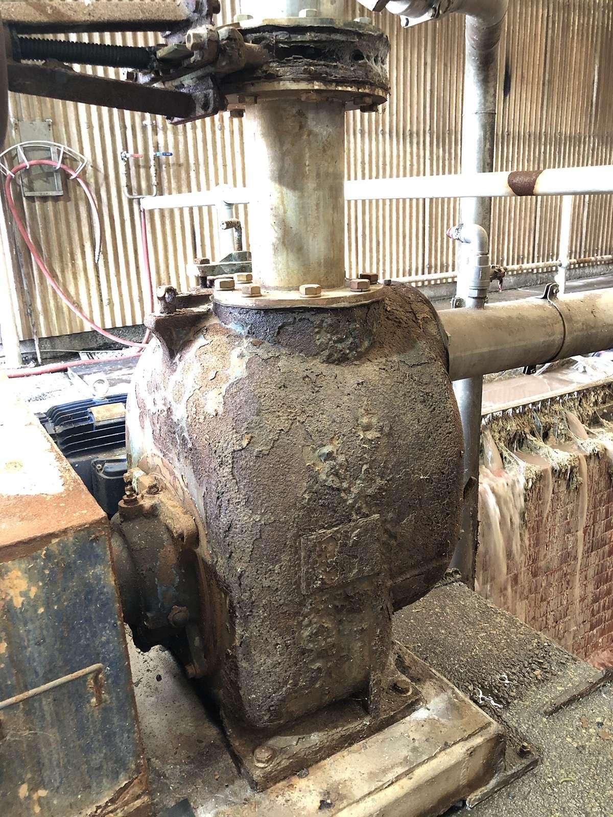 wastewater-abattoir-herd-pumps-like-swarznegger