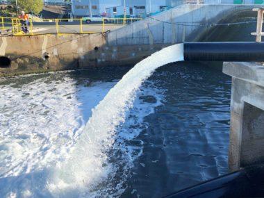 Energy Australia Tallawarra channel aeration