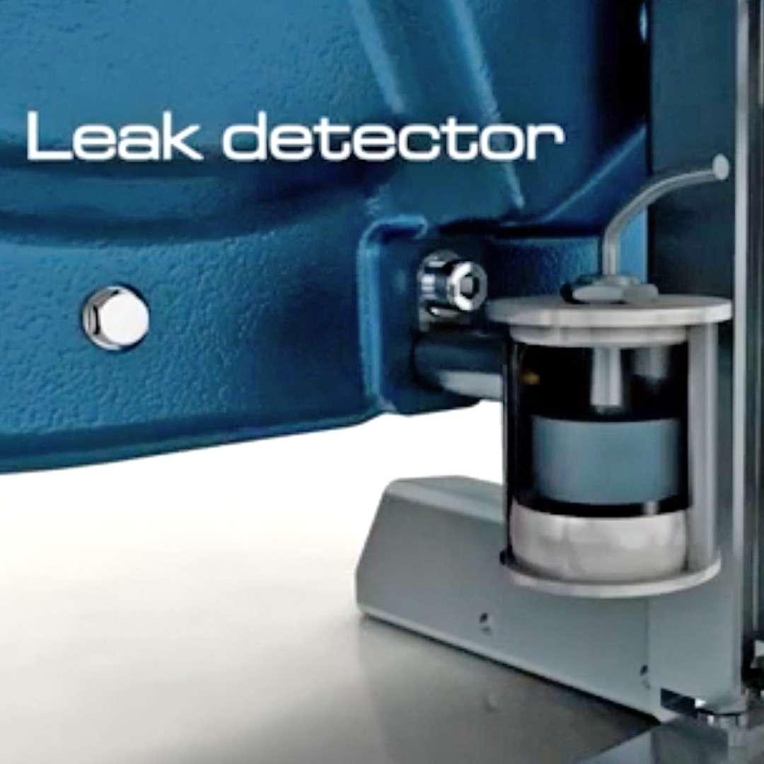 Ragazzini leak detection system