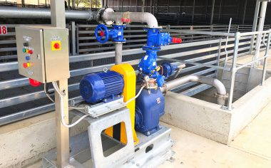 Wastewater pump for Junee Prime Lamb